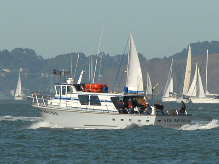 new rayann on san francisco bay